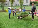 Úklid zahrady